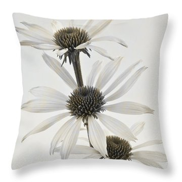 Three White Coneflowers Throw Pillow by Sandra Foster