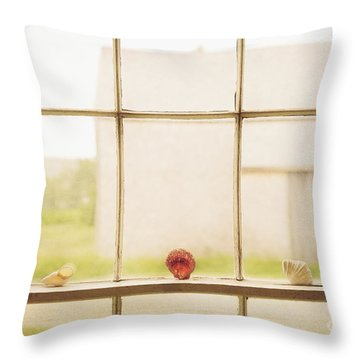 Three Window Shells Throw Pillow