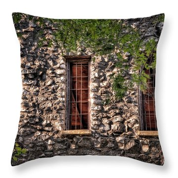 Three Windows Throw Pillow by Tamyra Ayles