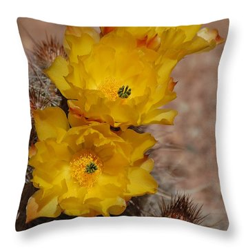 Three Yellow Cactus Flowers Throw Pillow