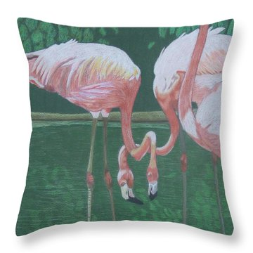 Threes A Crowd Throw Pillow by Anita Putman