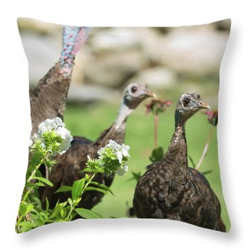 Threes A Crowd Throw Pillow