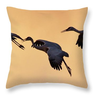 Three's Comapany Throw Pillow