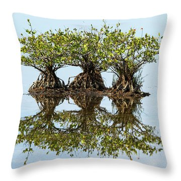 Throw Pillow featuring the photograph Three's Company by Arthur Dodd