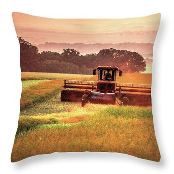 Swathing On The Hill Throw Pillow