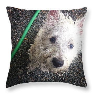 Wild Willie Discovers The Hose Throw Pillow