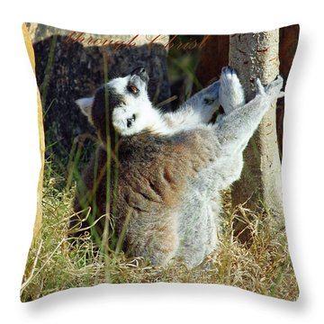 Through Christ Throw Pillow by Inspirational Photo Creations Audrey Woods