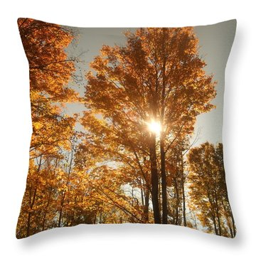 Through Sun Glasses Throw Pillow