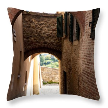 Through The Alleys Throw Pillow by Rae Tucker