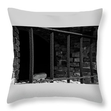 Through The Bars 2 Throw Pillow