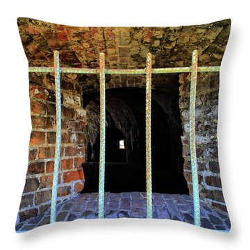 Through The Bars Throw Pillow