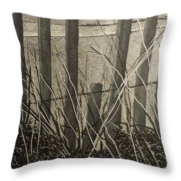 Through The Beach Fence Throw Pillow