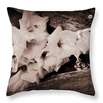 Through The Fence Throw Pillow by Diane Reed