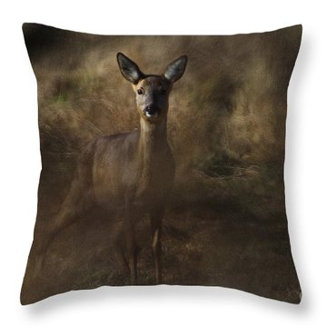 Through The Hedge Row  Throw Pillow