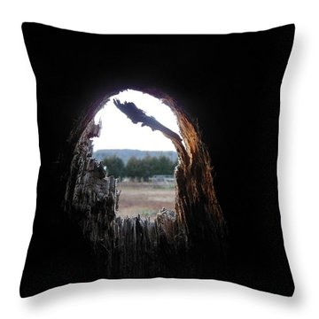 Through The Knot Hole Throw Pillow