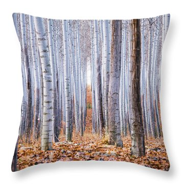 Through The Layers Throw Pillow