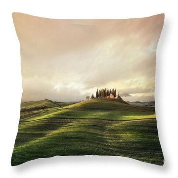 Through The Mists Of Dawn Throw Pillow