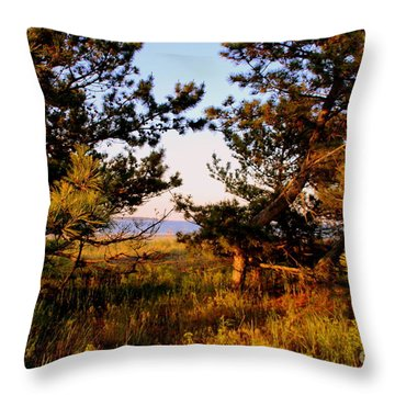 Through The Pine Grove Throw Pillow
