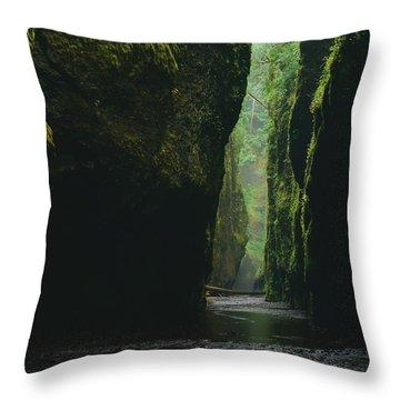 Through The River Throw Pillow
