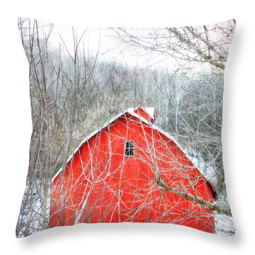 Through The Woods Throw Pillow by Julie Hamilton