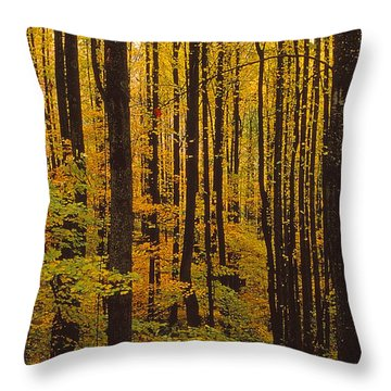 Through The Yellow Veil Throw Pillow