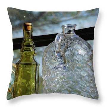 Thru The Looking Glass 2 Throw Pillow by Megan Cohen