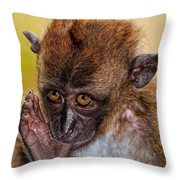 Throw Pillow featuring the photograph Thumb Sucker by Joerg Lingnau