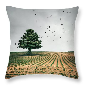Thunder Arising Throw Pillow