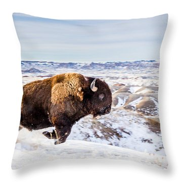 Thunder In The Snow Throw Pillow