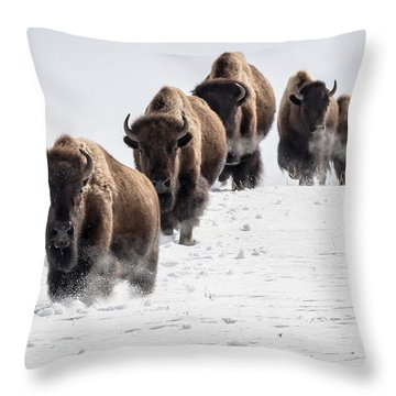Thunderbeast Throw Pillow by Jack Bell