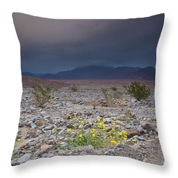 Thunderstorm Over Death Valley National Park Throw Pillow