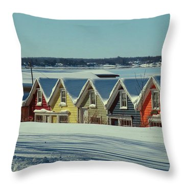Winter View Ti Park Boathouses Throw Pillow