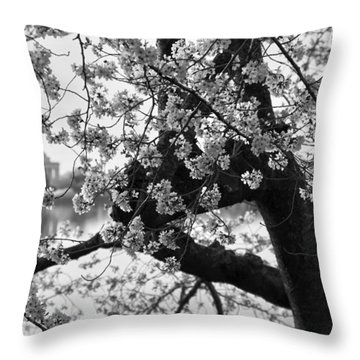 Tidal Basin Blossoms Throw Pillow