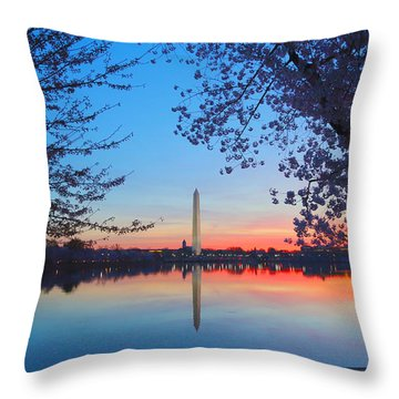 Tidal Basin Throw Pillow by Mitch Cat