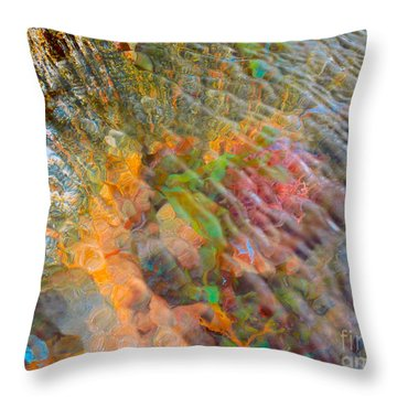 Tidal Pool And Coral Throw Pillow