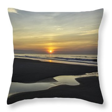 Tidal Pool Runoff Throw Pillow