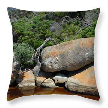 Tidal River Throw Pillow by Robert Lacy