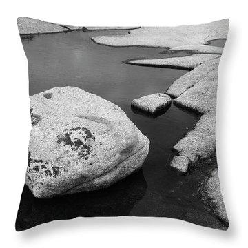 Tide Pool Boulder Throw Pillow
