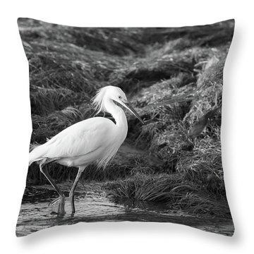 Tidepool Throw Pillow