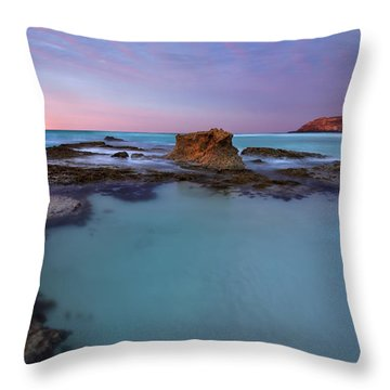 Tidepool Dawn Throw Pillow by Mike  Dawson