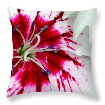 Tie-dye Pallette Throw Pillow