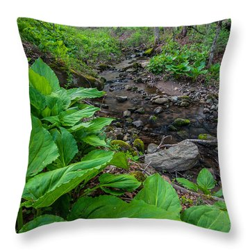 Tierney Springtime - New England Forest Throw Pillow