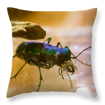 Tiger Beetl Under Cover Throw Pillow