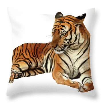 Tiger In Repose Throw Pillow
