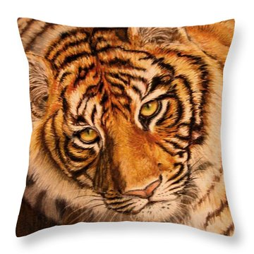 Throw Pillow featuring the drawing Tiger by Karen Ilari