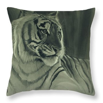 Tiger Light Throw Pillow by Aaron Blaise
