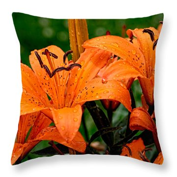 Tiger Lilies With Spring Shower Throw Pillow