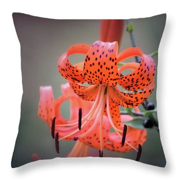 Tiger Lily 2 Throw Pillow