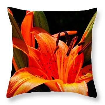 Tiger Lily Throw Pillow by Christopher Holmes