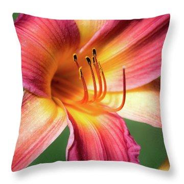 Tiger Lily Close Up Throw Pillow